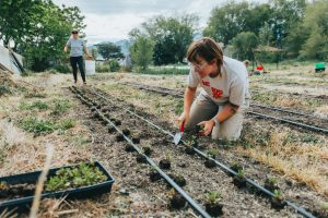 Small Farm Initiative