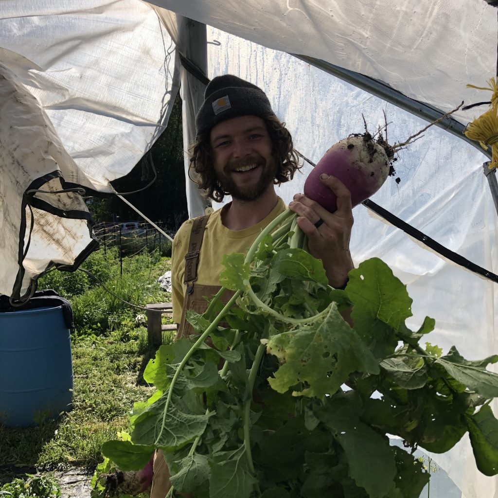 Tucker with a turnip
