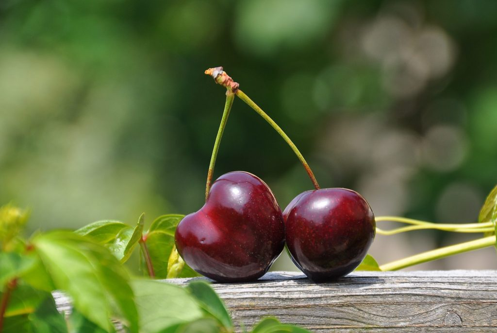 close-up-photography-of-a-red-cherry-fruit-162689